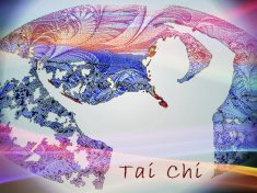 Tai Chi Weekend